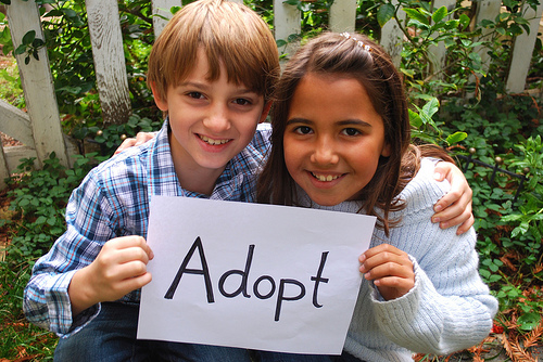 adopt medium image